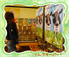 Milk Server